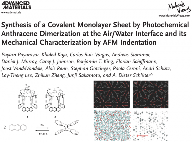 Synthesis of a Covalent Monolayer Sheet by Photochemical Anthracene Dimerization at the Air/Water Interface and its Mechanical Characterization by AFM Indentation