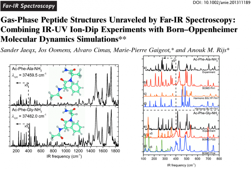 Gas-Phase Peptide Structures Unraveled by Far-IR Spectroscopy: Combining IR-UV Ion-Dip Experiments with Born–Oppenheimer Molecular Dynamics Simulations