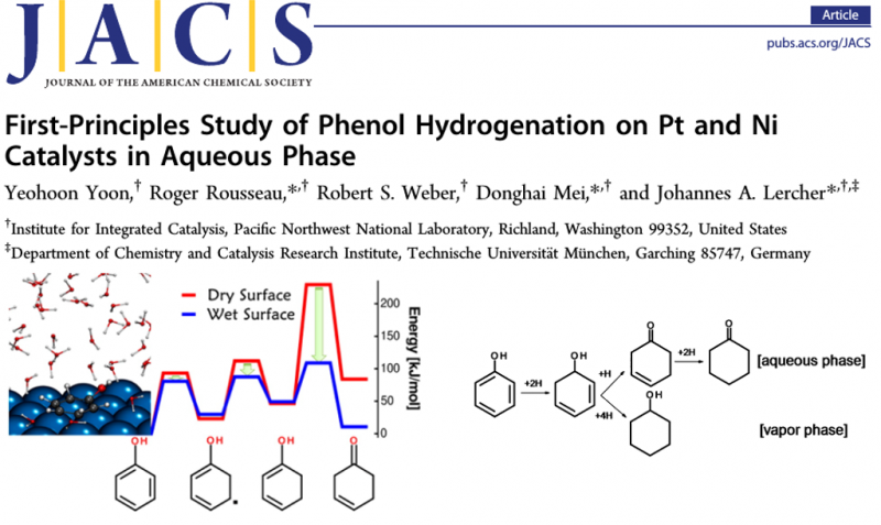 First-Principles Study of Phenol Hydrogenation on Pt and Ni Catalysts in Aqueous Phase