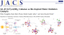 science:doi_10_1021_jacs_5b05831_pub.png