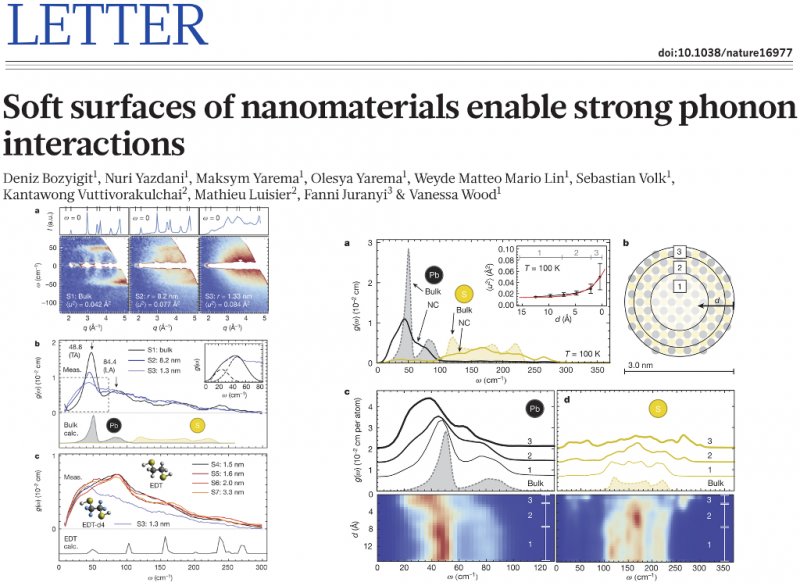 Soft surfaces of nanomaterials enable strong phonon interactions