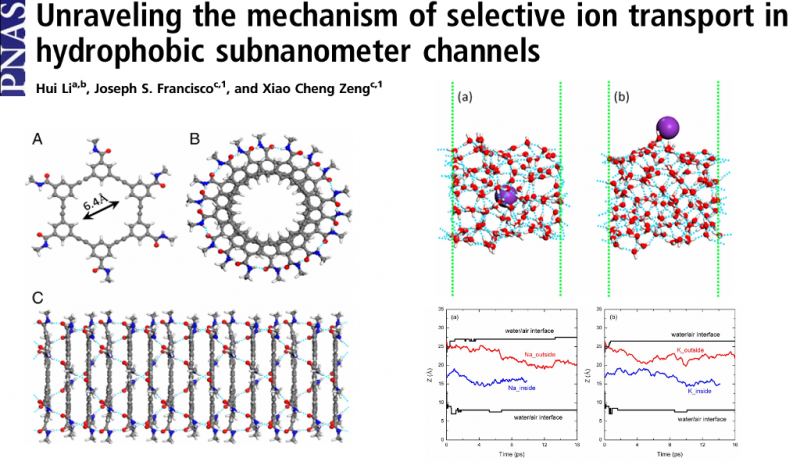 Unraveling the mechanism of selective ion transport in hydrophobic subnanometer channels